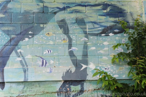 Local mural of diver with whale in Samana, Dominican Republic