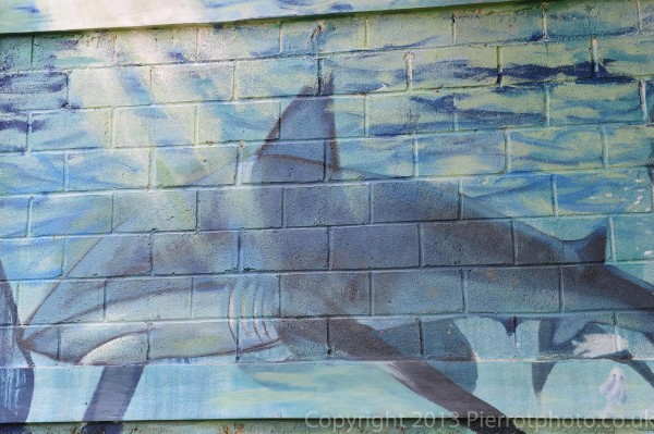 Local mural of shark in Samana, Dominican Republic