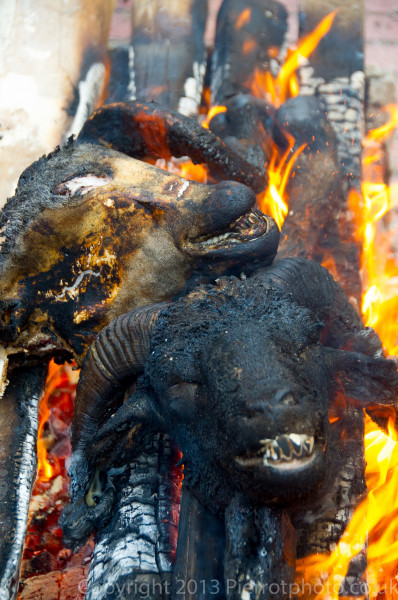 Slaughtered sheeps' heads being burnt, during the festival of Eid al Ahad, in the medina in Essaouira,
